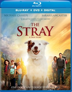 The Stray (with DVD) [Blu-ray]