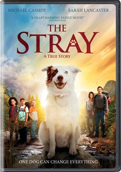 The Stray [DVD]