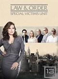 Law and Order - Special Victims Unit: Season 13 [DVD]