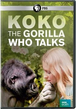 Koko: The Gorilla Who Talks [DVD]